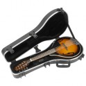 SKB Cases - SKB 80A - Mandolin Case for A-Mandolin SKB 544 - Cello Case for 4/4 Celli